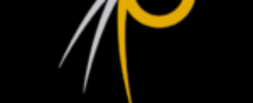 cropped-logomajahuel_tondo_oro2-01.png