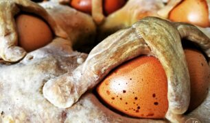 casatiello-senza-glutine-uova